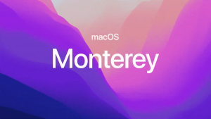 How to download new Safari browser before MacOS Monterey arrives
