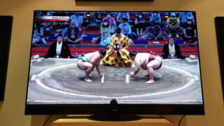 Panasonic TX-55JZ2000 with sumo wrestling