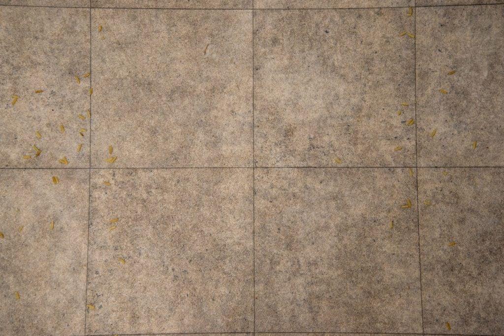 Shark WandVac System WS620 clean hard floor