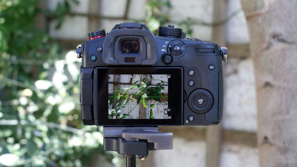 Panasonic Lumix GH5 II SD rear display