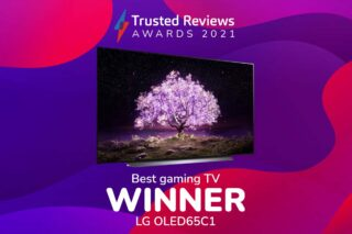 TR Awards 2021 Best Gaming TV winner
