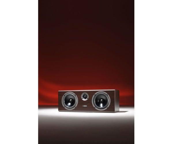 Acoustic Energy Neo Max 11